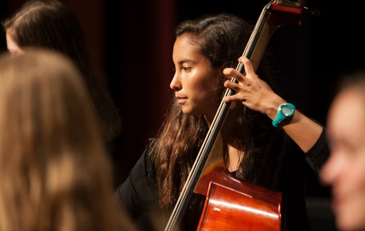 Counterpoints Member Selected for the South Central Senior Regional Orchestra