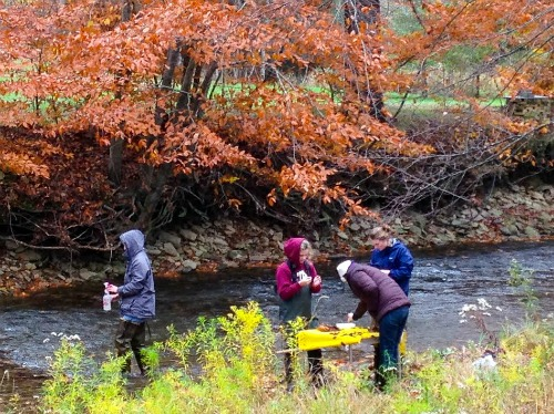 Students in the Environmental Studies & Research senior seminar travel outside the classroom for their projects.